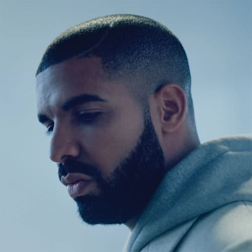 Drake Hair - Skin Fade + Thick Beard