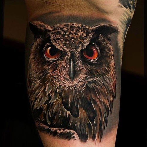 3D Realistic Owl Tattoo Designs